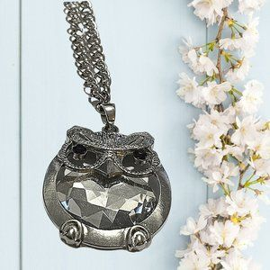 Majestic long necklace with an owl Pendant